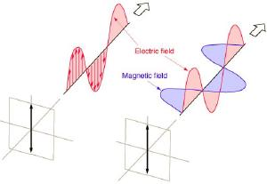 A polarized light wave.