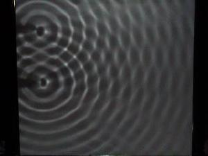 Water waves are similar to light waves.