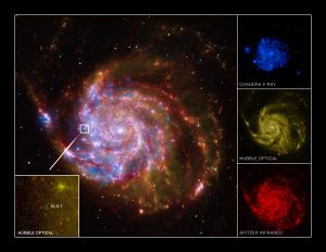 ULX-1 is located near a spiral arm of M101.