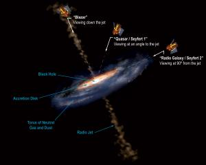 Active Galactic Nuclei by point of view.