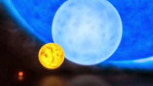A size comparison of the Sun with a red dwarf, blue dwarf and R136a1.